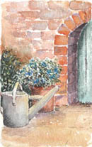 Garden Corner #5 by Wendy Griffiths - No 5 in a series