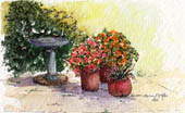 Garden Corner #10 by Wendy Griffiths - no 10 in a series
